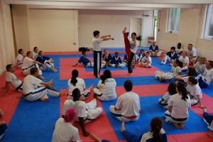 pics teaching seminar